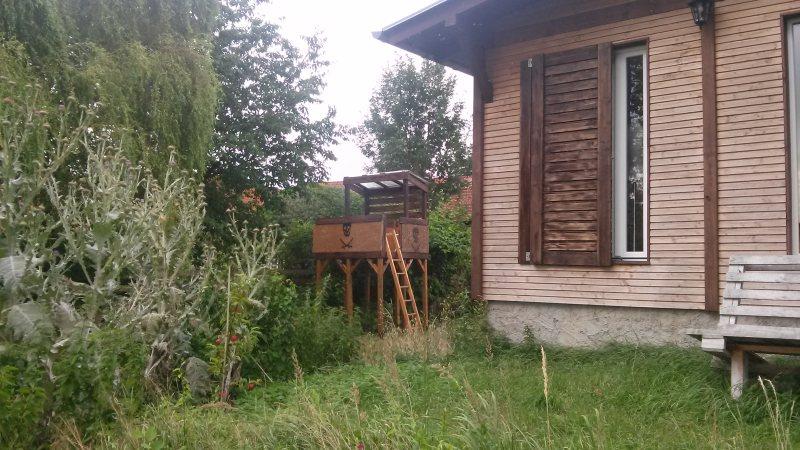Das Baumhaus in der Wildnis zwischen Disteln und Staudenknöterich