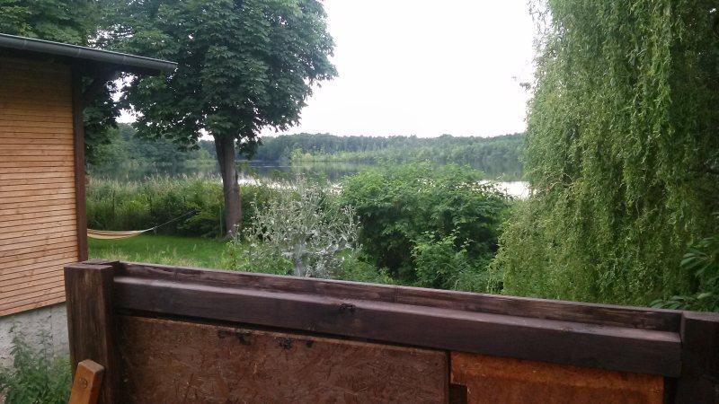 Blick vom Baumhaus auf den Bauernsee