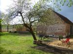 Heiraten im Garten unter dem Apfelbaum am See