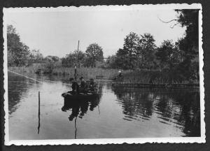 Angler-Ruten
