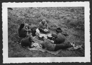 Picknick-dobbrikow