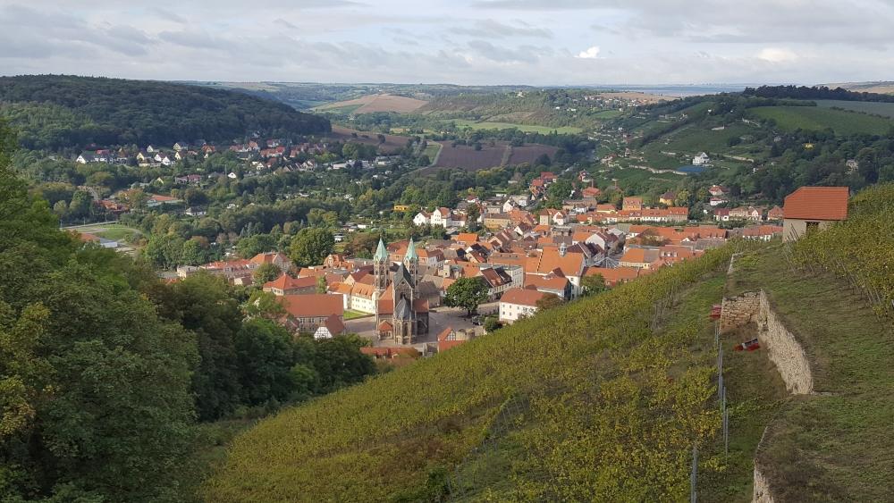 Wein blick auf Freyburg