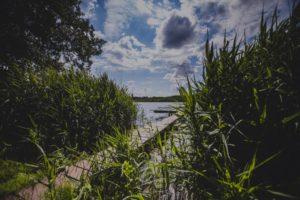Steg am Bauernsee Dobbrikow