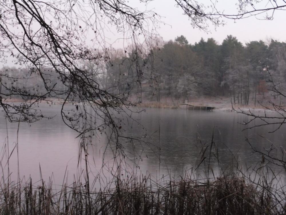 Der verlassene Steg am See