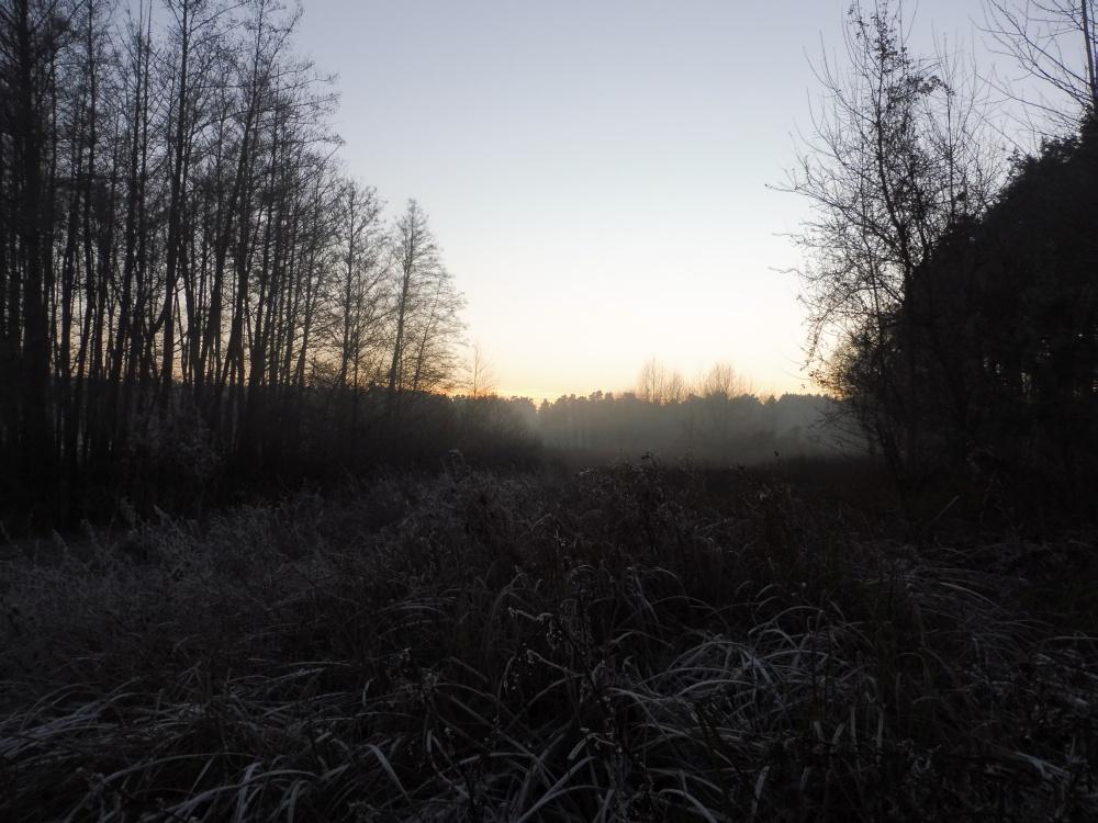 Winterlandschaft an der Straße nach Rieben