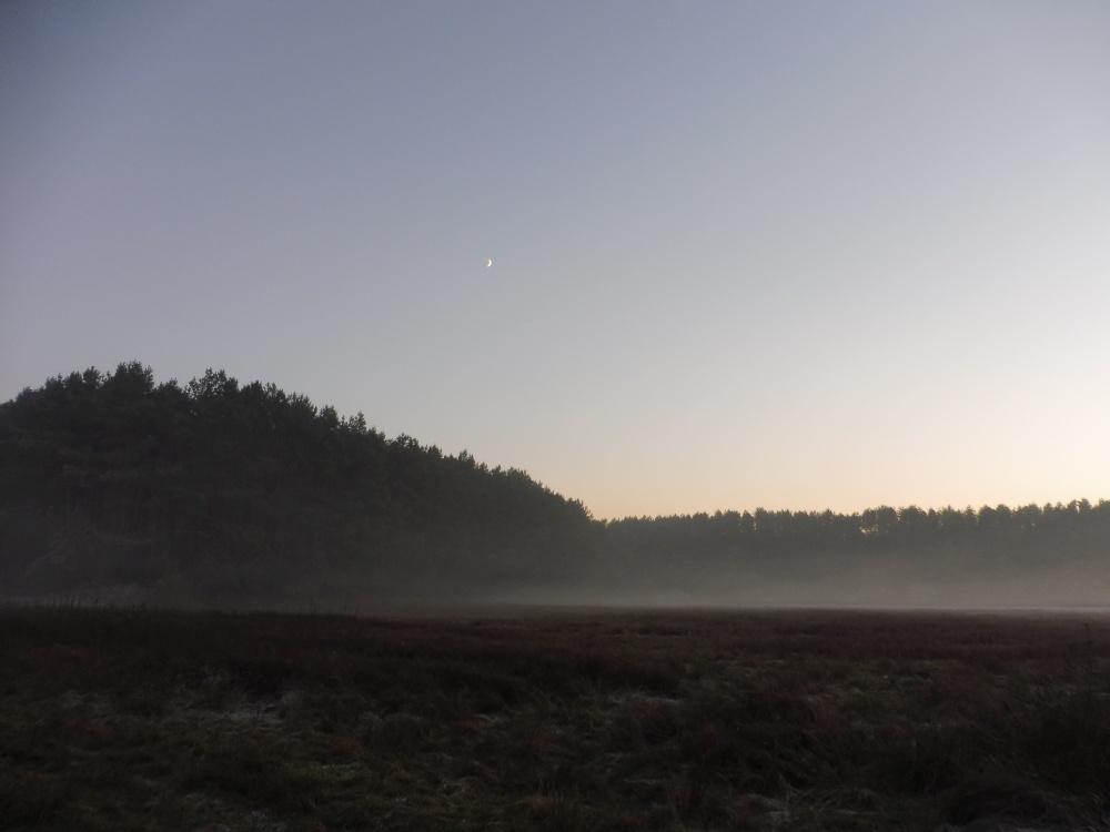 Winterlandschaft auf dem Weg zum Hintersee