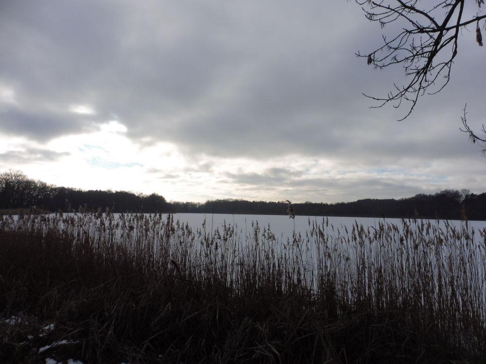 Bauernsee