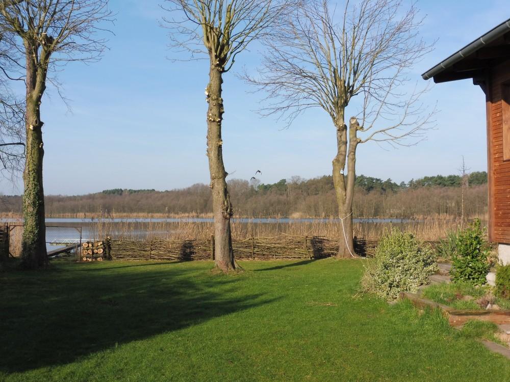 Neuer Naturzaun zum See