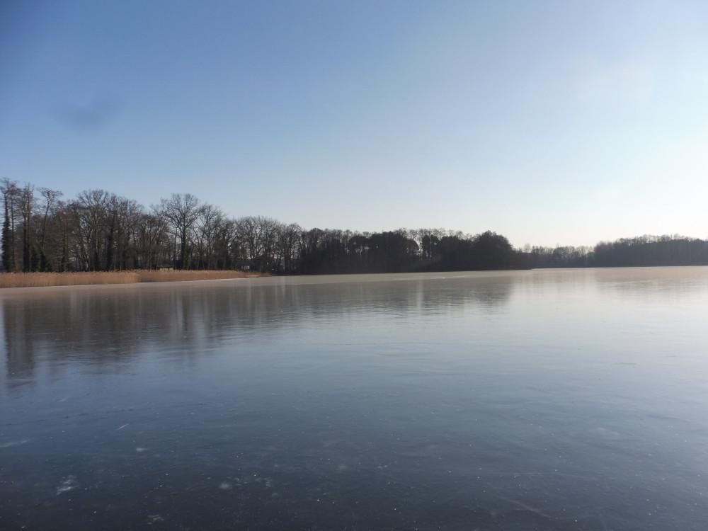 Zugefrorener Bauernsee